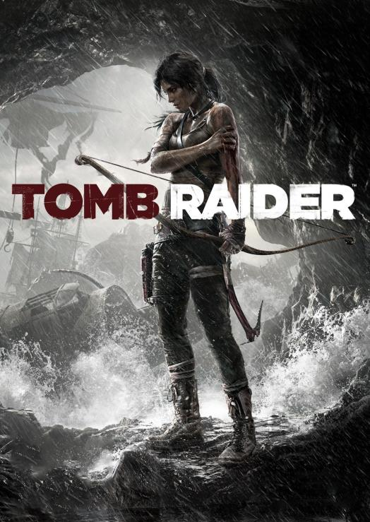 Poster of Tomb Raider (2013) game